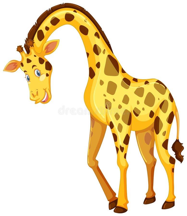 Giraffe sur le fond blanc illustration libre de droits