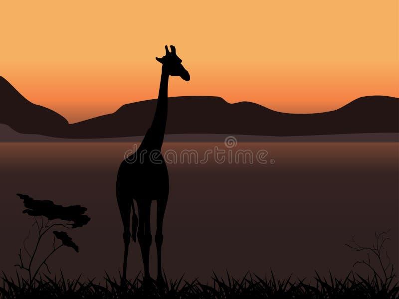 Giraffe sur un fond de coucher du soleil illustration libre de droits