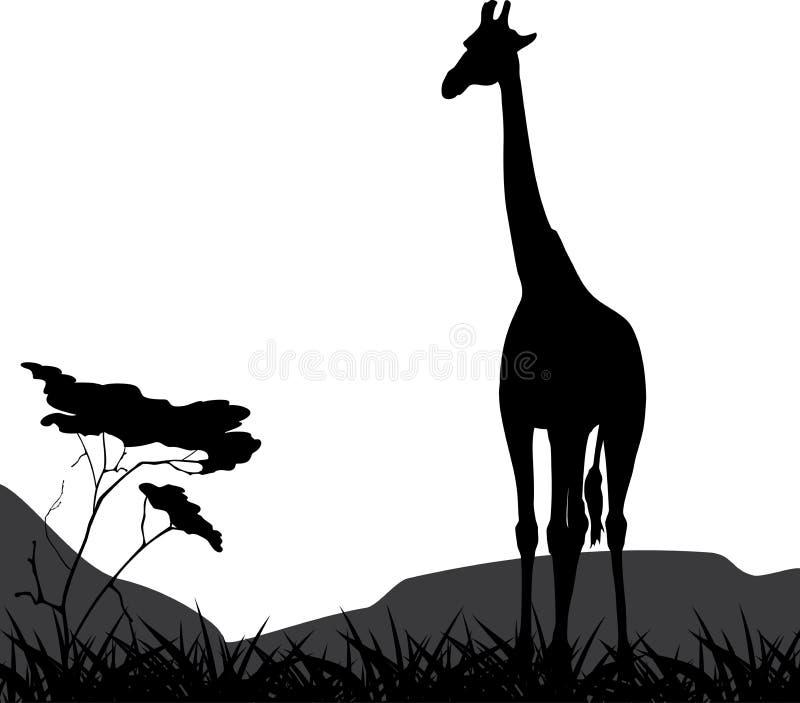 Giraffe sur un fond de nature illustration libre de droits