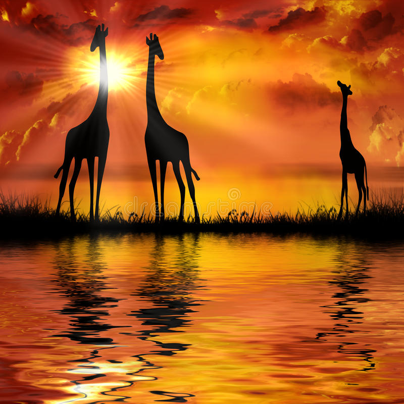 Giraffen stock illustratie