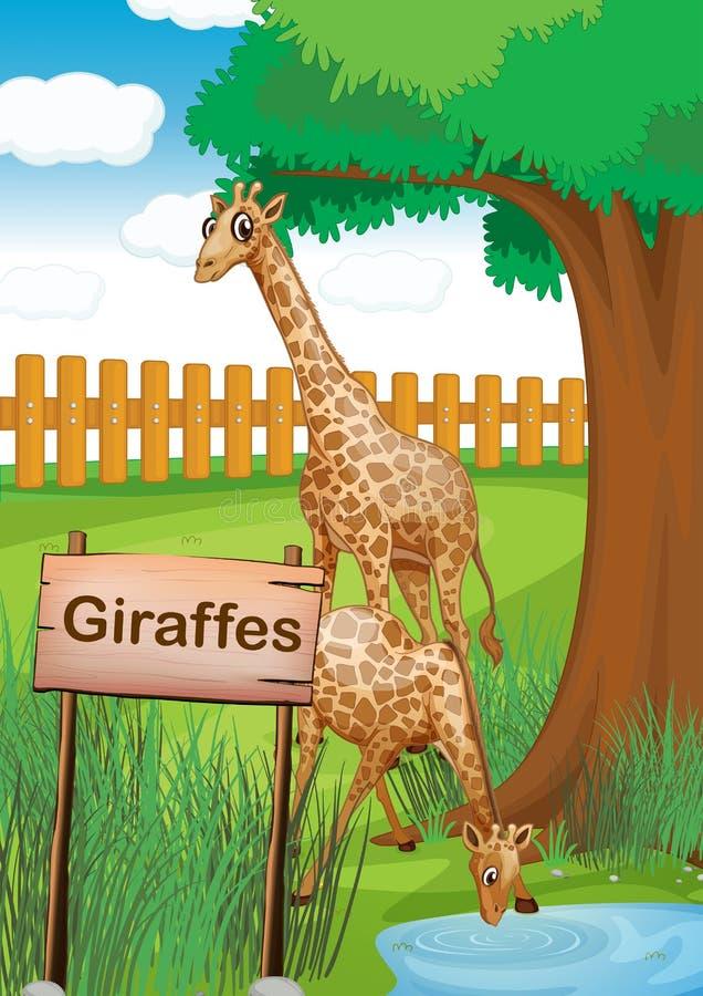 Giraffen binnen de houten omheining royalty-vrije illustratie