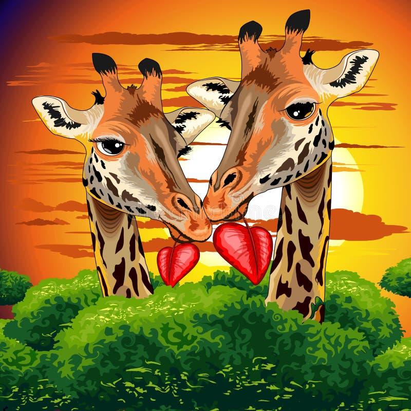 Giraffen in der Liebe in der wilden afrikanischen Tagesvektor-Illustration des Savannen-Valentinsgruß-s lizenzfreie abbildung