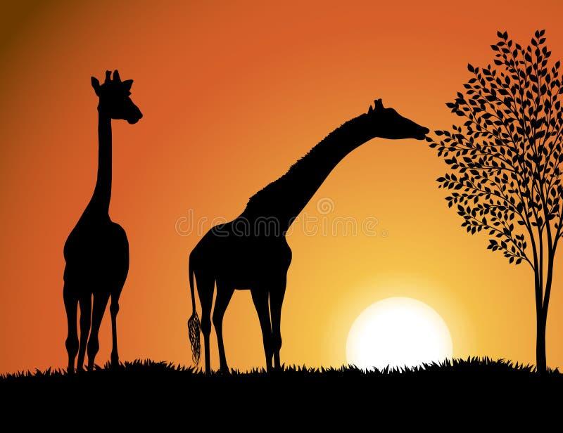 Giraffen im Afrika-Hintergrundvektor stock abbildung