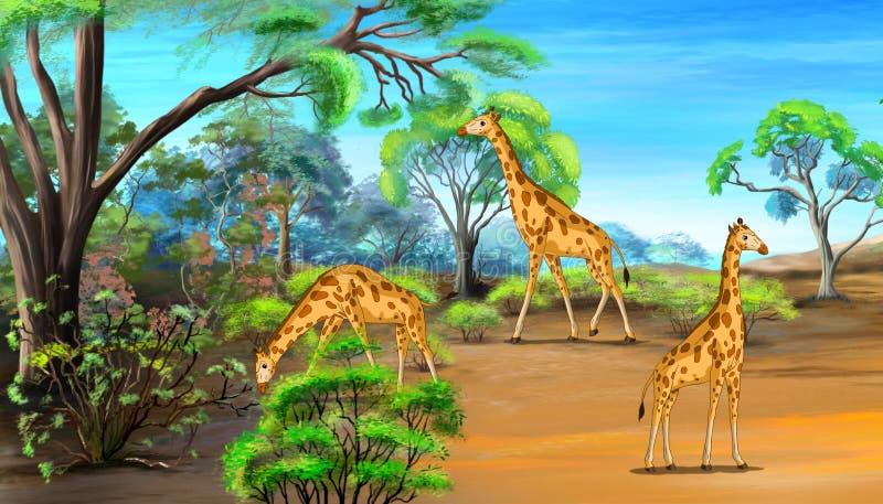 Giraffes Grazing in the Savannah stock illustration