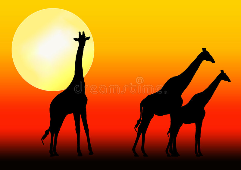 giraffsilhouettesolnedgång vektor illustrationer