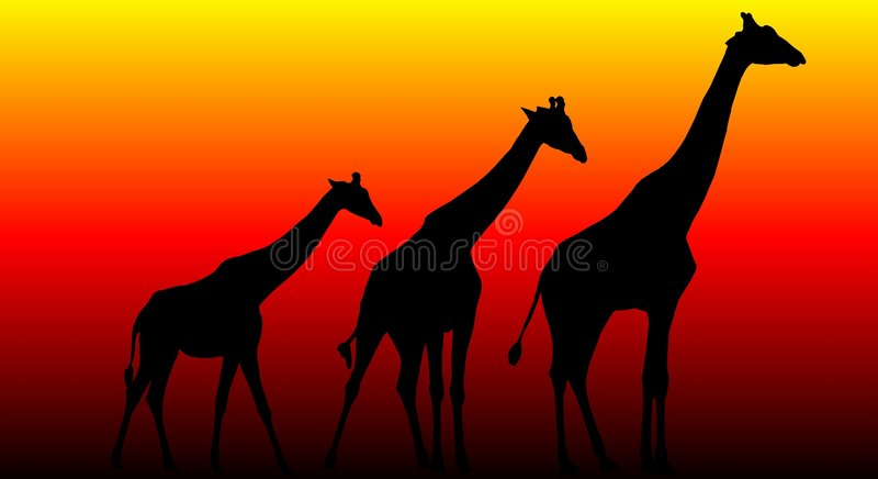 girafftrio stock illustrationer
