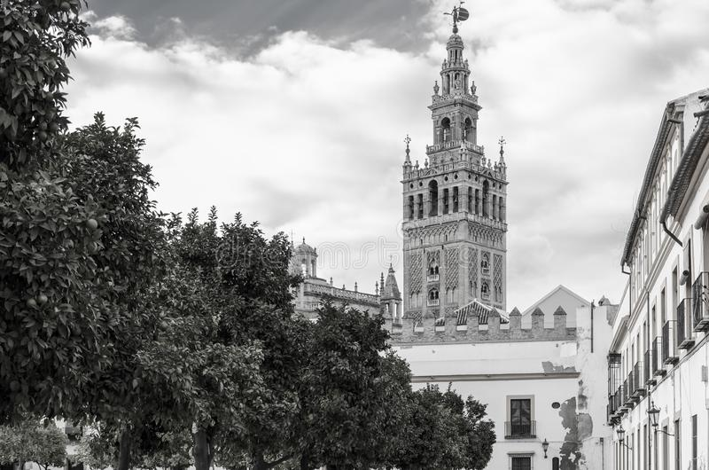 The Giralda tower in black and white. The Giralda is the bell tower of the Seville Cathedral in Seville, Spain. It was originally built as the minaret for the stock photos