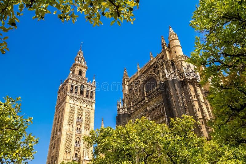 Giralda en dak van Sevilla Cathedral stock fotografie