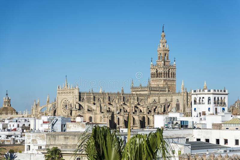 Giraldaen i Seville, Andalusia, Spanien arkivfoto