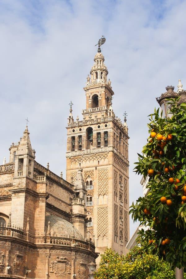 Giraldaklokketoren van de Kathedraal van Sevilla en sinaasappelen royalty-vrije stock foto's