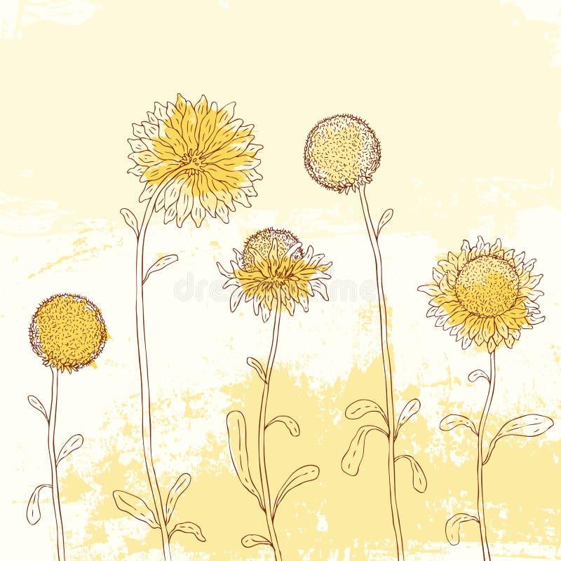 Girasol amarillo en fondo de la acuarela. ilustración del vector