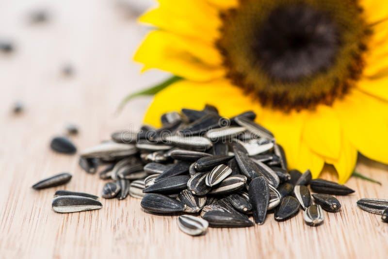 Girasol con las semillas en la madera imagen de archivo
