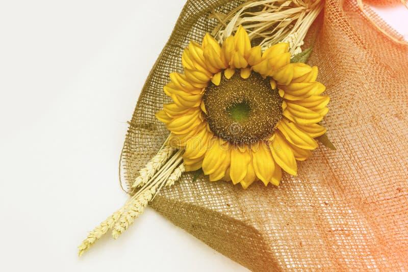 Download Girasol de la flor foto de archivo. Imagen de pueda, verano - 42434772