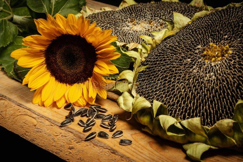 con flor de la vida grande Tabla de desayuno de/madera