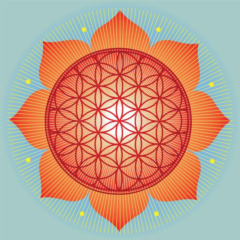 Girasol sagrado de la geometría ilustración del vector