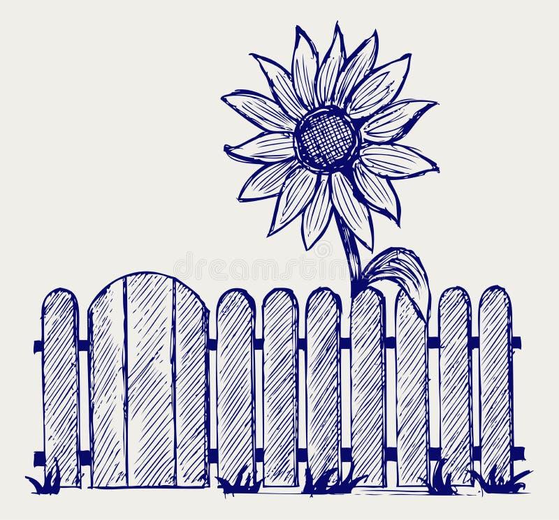 Girasol y cerca libre illustration