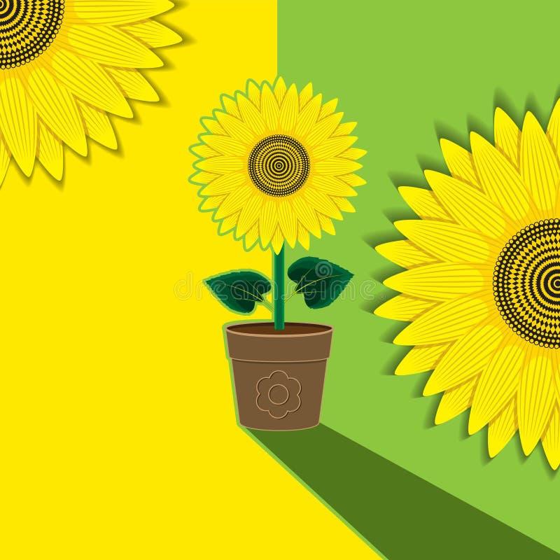 Girasole giallo verde del fiore del fondo della pianta conservato in vaso Fondo, insegna, etichetta, copertura Immagine di vettor illustrazione di stock