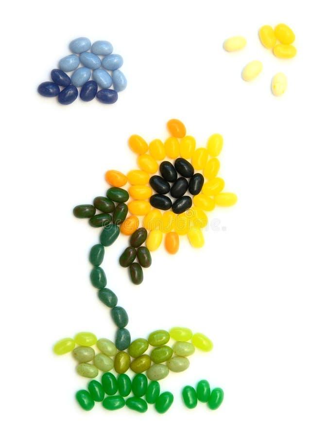 Girasole - mestiere dei fagioli di gelatina dei bambini immagine stock