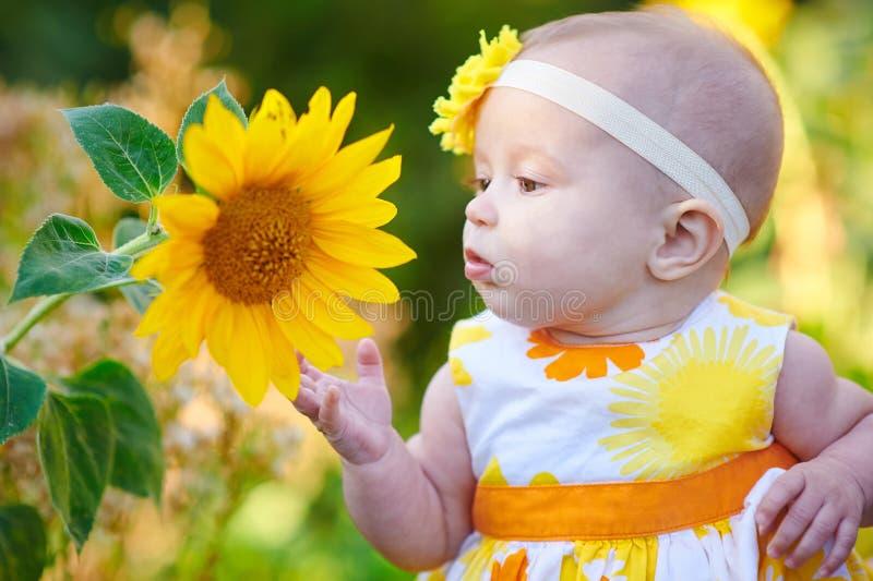 Girasole odorante della bambina al giorno soleggiato di estate immagini stock libere da diritti