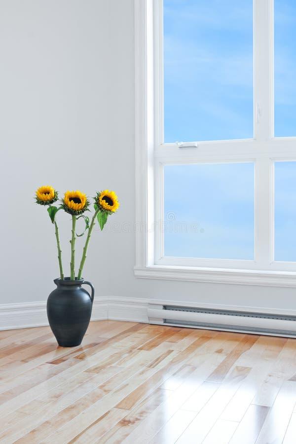 Girasoles en sitio vacío con la ventana grande imagen de archivo libre de regalías