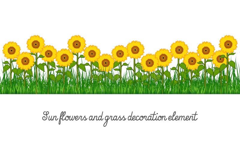 Girasoles y elemento de la decoración de la hierba stock de ilustración
