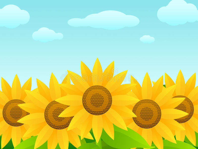 Girasoli royalty illustrazione gratis