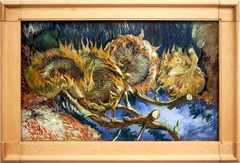 Girasoli appassenti del ` quattro Immagine del ` di Van Gogh Il museo del ller del ¼ di Kröller-Mà Otterlo netherlands immagine stock libera da diritti