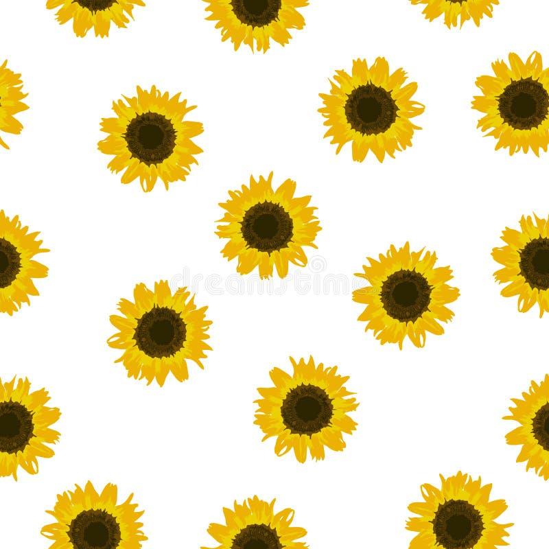 Girassol amarelo do teste padrão sem emenda no fundo branco, vetor eps 10 ilustração do vetor