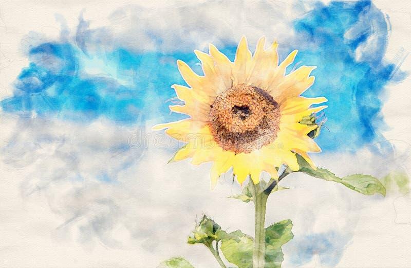 Girassol bonito de encontro ao céu azul ilustração stock