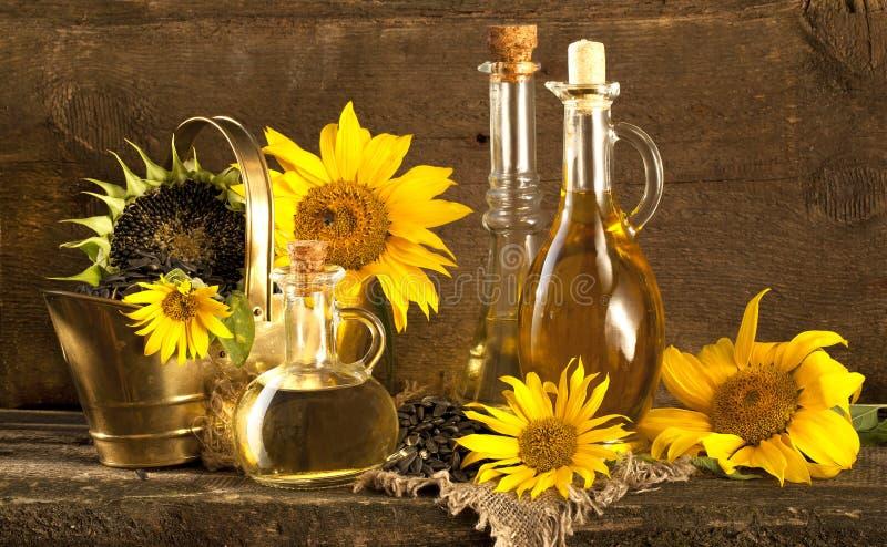 Girassol e vegetal fotografia de stock royalty free