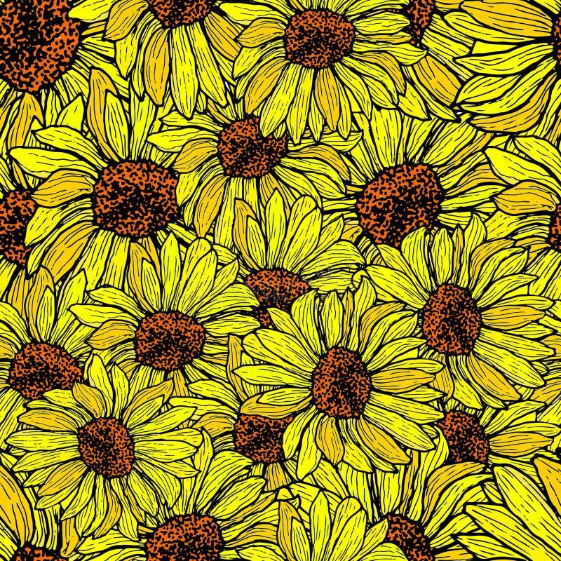 Girassol sem emenda, teste padrão quebrado Vetor floral do fundo ilustração do vetor