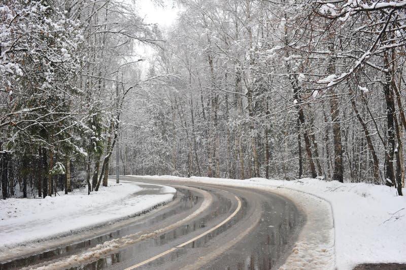 Gire a estrada do inverno na zona da floresta foto de stock royalty free