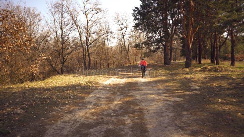 Giri caucasici della donna di sport del ciclista lungo la pista nella foresta un giorno soleggiato della molla Guidando una ragaz immagine stock libera da diritti