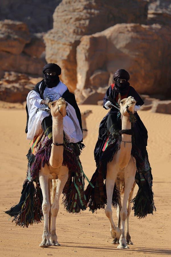 Giri del beduino sul cammello attraverso il deserto sabbioso fotografie stock