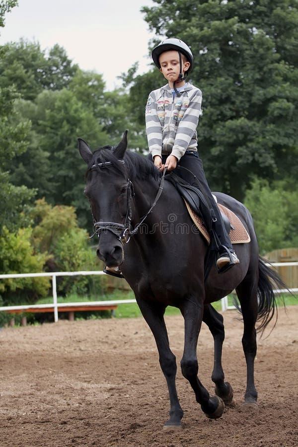 Giri del ragazzo su un cavallo immagini stock libere da diritti