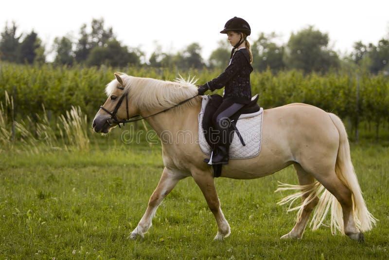 Giri della ragazza al cavallo fotografia stock