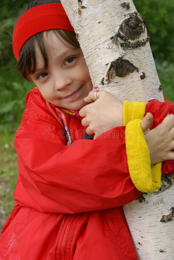 Girl. The girl embraces a birch stock image