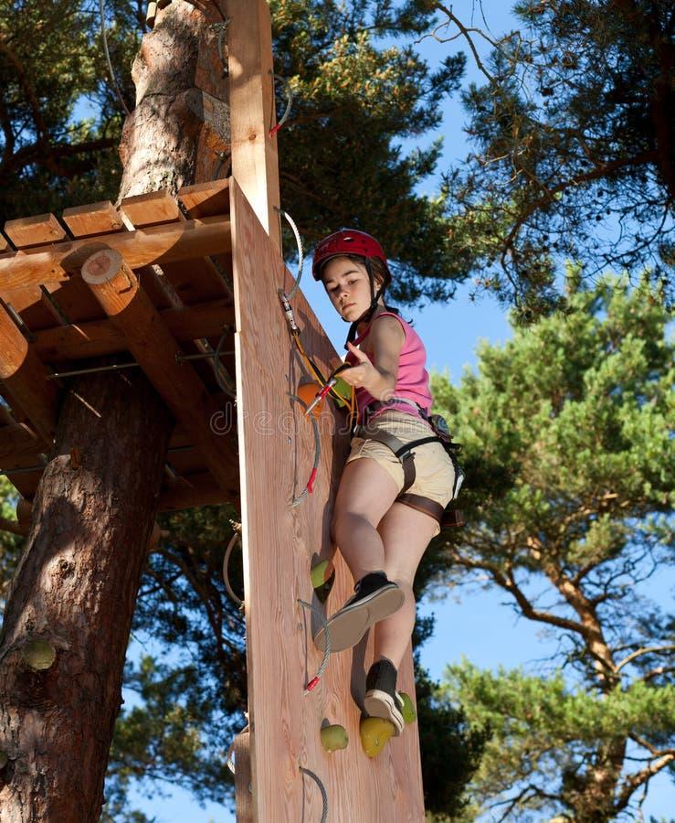 Download Girl in adventure park stock image. Image of outdoor - 24306387