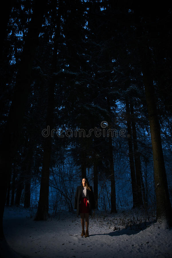 Girl alone in the woods. Single woman in the terrible winter woods royalty free stock photo