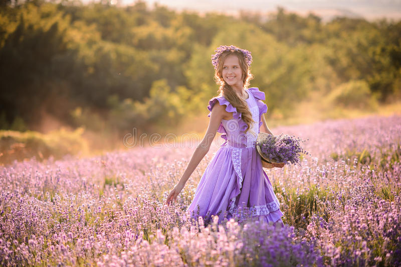 Beautiful girl in a field of lavender on sunset. royalty free stock photo