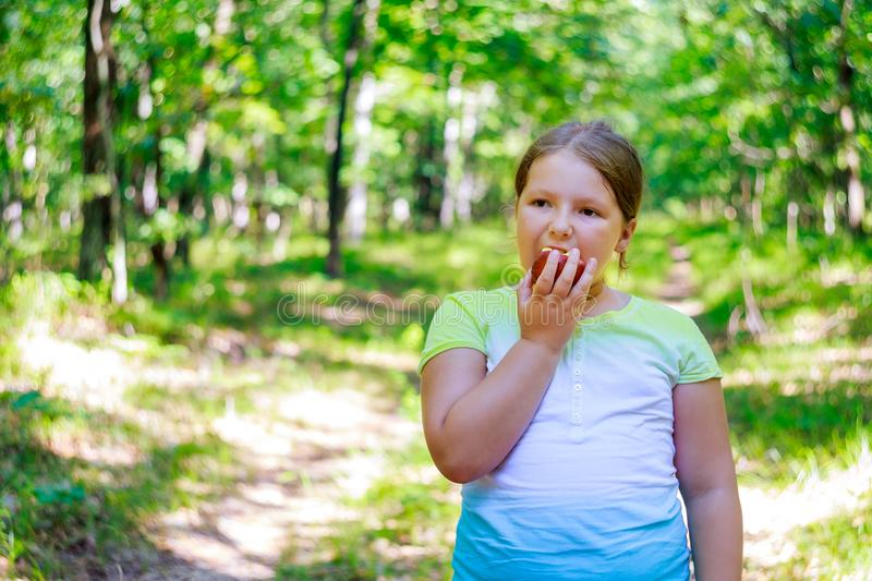 Girl with Apple in the Beautiful Girl Eating Organic Apple in the Orchard. Harvest. Beautiful Girl Eating Organic Apple in the Orchard of happy child eating red stock photos
