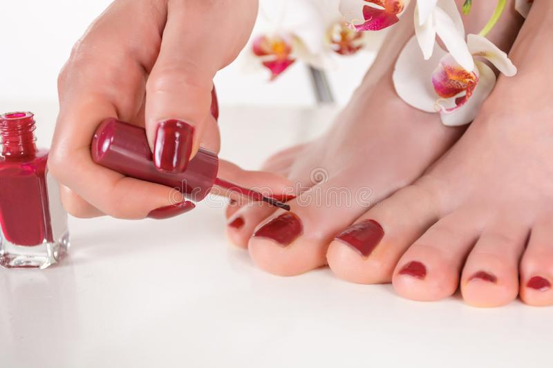 Girl applying dark red nails polish on her feet with hands brush royalty free stock image