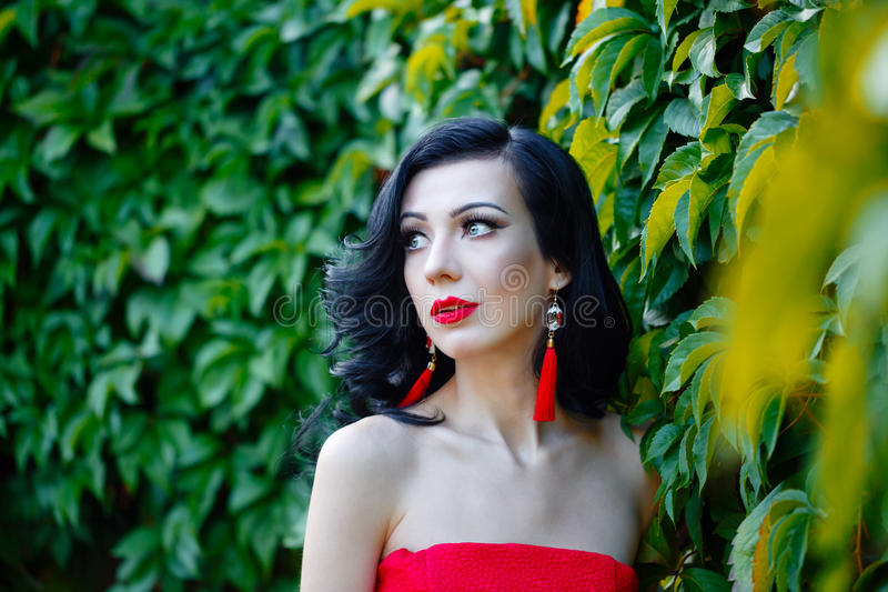 Girl in art deco style. Retro portrait. Attractive girl in red dress. The girl brunette. Portrait of a close-up on a background of green grapes. Art Deco and royalty free stock images
