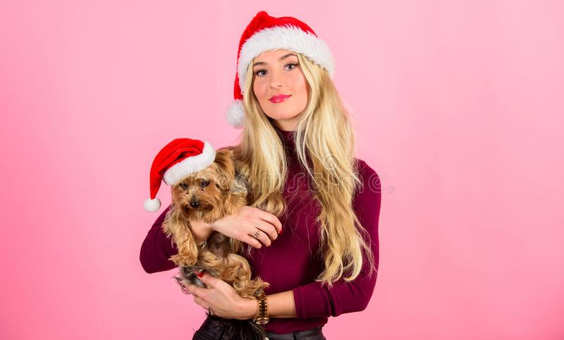 Girl attractive blonde hold dog pet pink background. Celebrate christmas with pets. Reason love christmas with pets. Ways to have merry christmas with pets royalty free stock photo