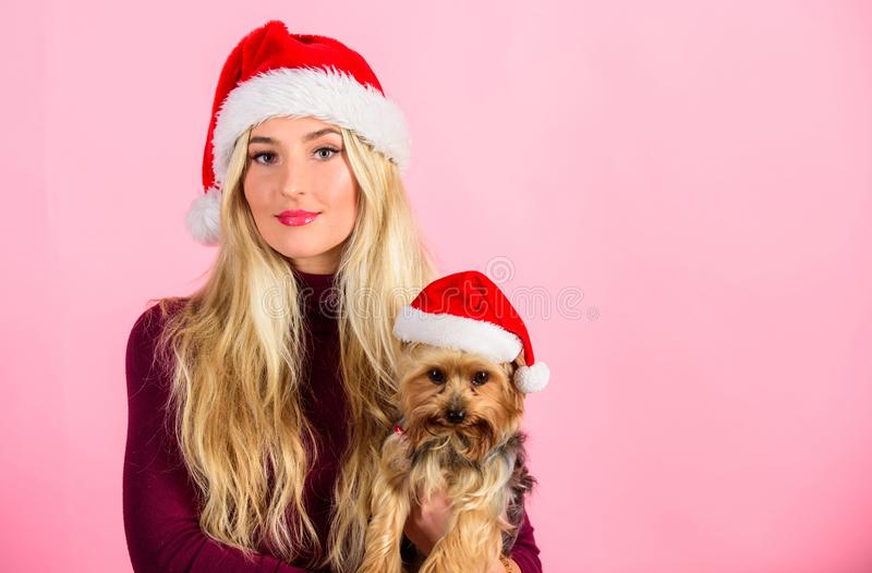 Girl attractive blonde hold dog pet pink background. Woman with puppy wear santa hat. Celebrate christmas with pets. Ways to have merry christmas with pets royalty free stock images