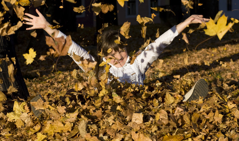 The girl on autumn leaves. Cute smiling girl having fun in leaves in autumn stock image