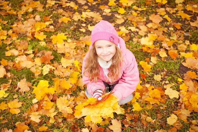 Little child at autumn stock image