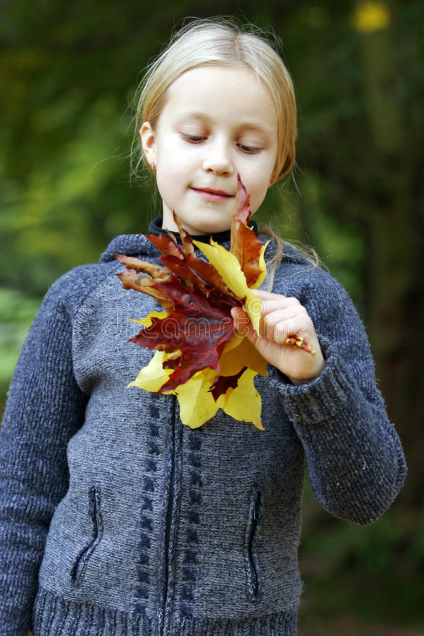 Girl in the autumn park royalty free stock photos