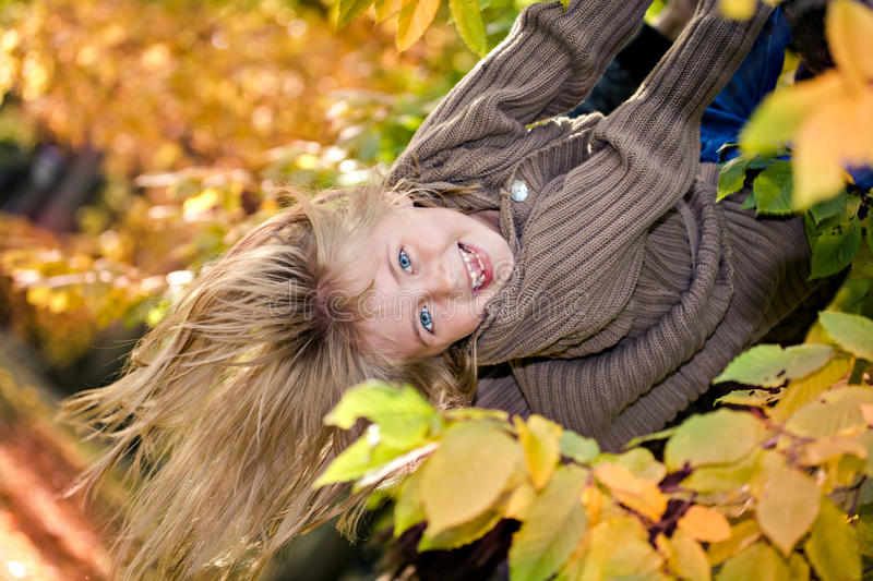 Girl in the autumn park stock images