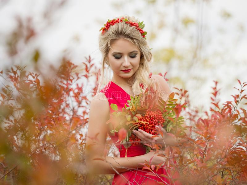 Girl in autumn park with a bouquet of mountain ash in the afternoon. Portrait of a beautiful white girl with a bouquet of mountain ash with hairstyle and makeup stock photography